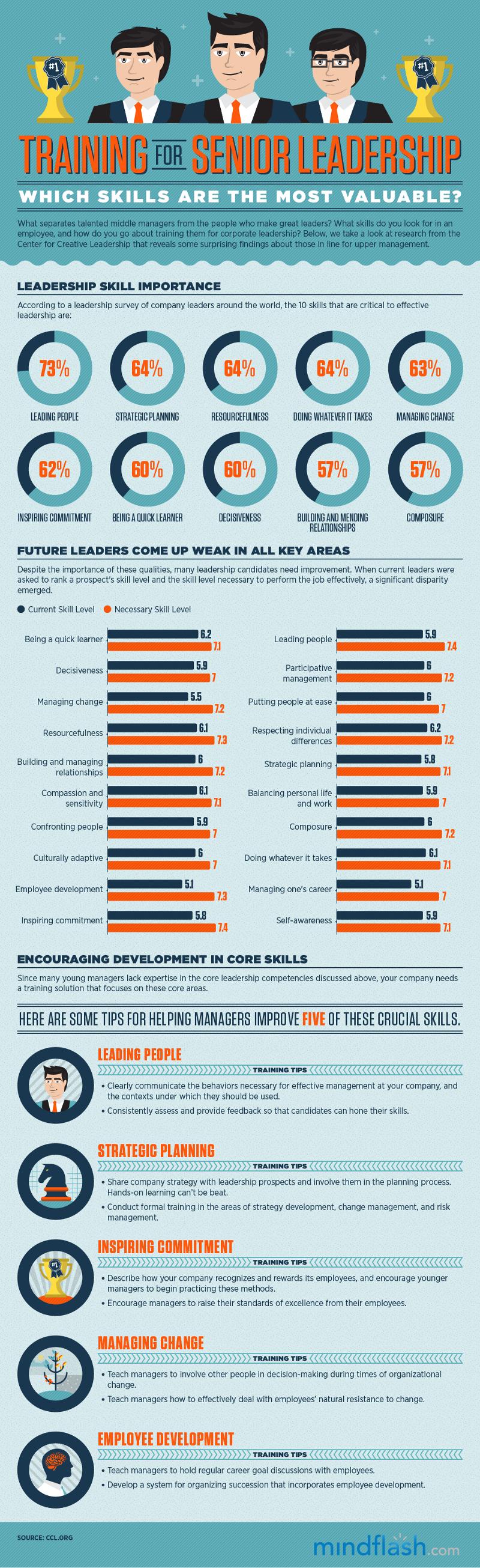 Skills for Senior Leadership