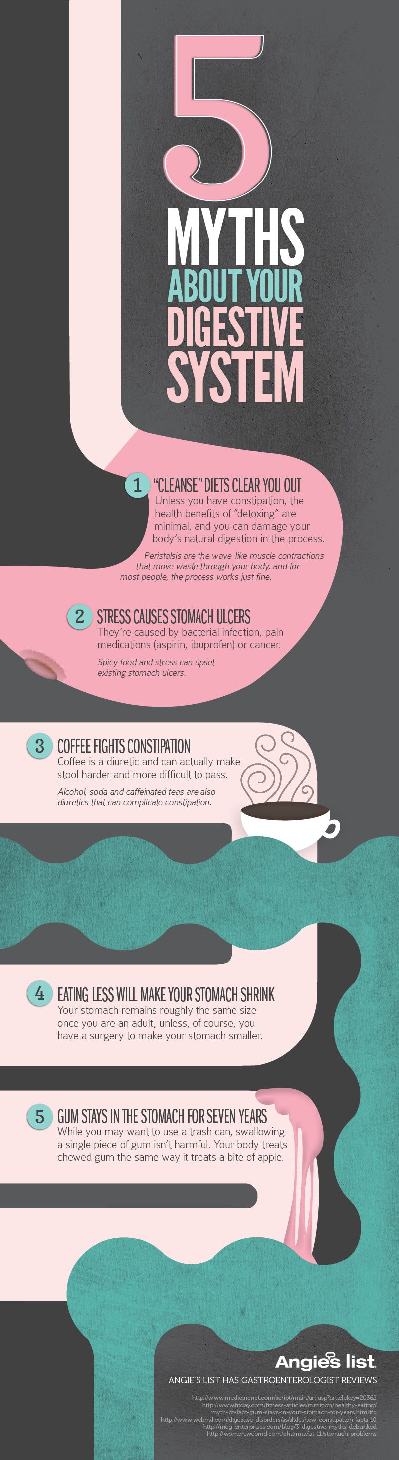 Interesting Facts About the Digestion System