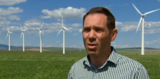 5-environmental-impacts-of-wind-energy